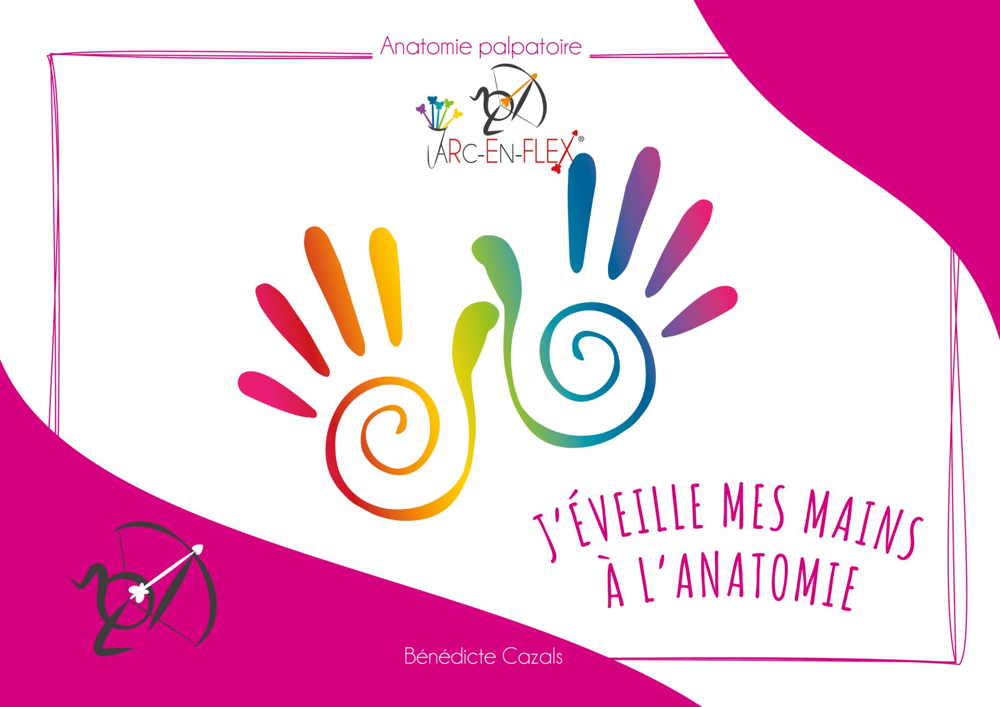 """L'Anatomie Palpatoire Arc-en-Flex® - """"J'éveille mes mains à l'anatomie"""""""